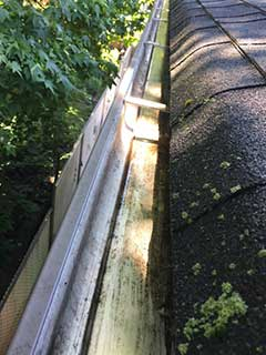 gutter cleaning NJ