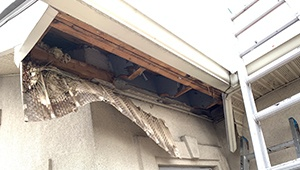 Soffit Repair Specialist Company Near me NJ